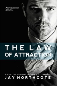 The Law of Attraction cover